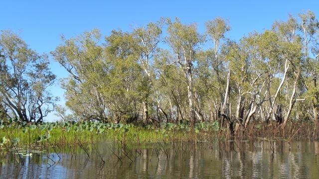 Kakadu National Park le 01 juin 2013/Kakadu National Park June 01, 2013 dans Australie kakadu-ttdm-01_06_2013-009-640x360